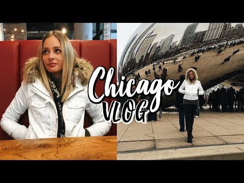 THE MOST BEAUTIFUL CITY IN AMERICA | Chicago Travel Vlog | Renee Amberg