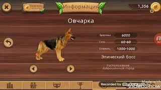 Играю в симулятор кошки онлайн