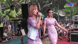 Download Mp3 Bojo Galak Maya & Edot Savala Live Suwawal Gasteam
