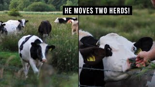My Dad Can Speak Cow!