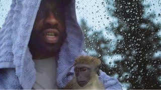 I Lost Mojo During Torrential Rain!  MojotheMonkey