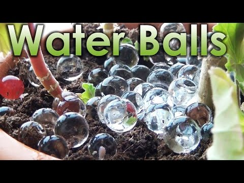 What is Water Balls? Sodium Polyacrylate and Chemistry!