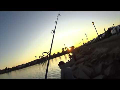 SALMON FISHING BENICIA 1ST ST PIER