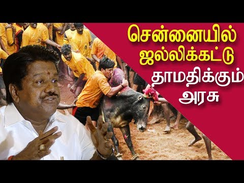 Chennai jallikattu waiting for government approval tamil news, tamil live news, news in tamil red pix  CHENNAI: The IPL-format jallikattu expected to happen at East Coast Road in Chennai on Sunday will take place at Marg's Swarnabhoomi project in Cheyyur on the ECR beyond Kalpakkam, a member of Chennai Jallikattu Amaippu told redpix. The date for the event has not been finalised yet. The bull-taming sport organised by the Tamil Nadu Jallikattu Peravai originally scheduled to happen on Sunday opposite the Madras Crocodile Park on Sunday was cancelled as the State rejected the venue, said Gokul Nath from the Amaipu.