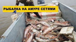 ПРОМЫСЛОВАЯ РЫБАЛКА СЕТЯМИ НА АМУРЕ ЛОСОСЬ Рыбалка на Амуре