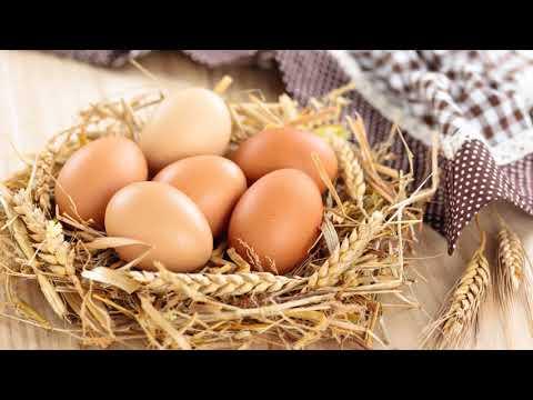 Польза сырых яиц для организма человека, женщины, мужчины!