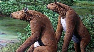 chalicotherium-the-hoofed-gorilla-mimic