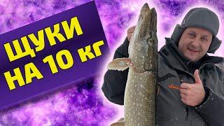 Крупные щуки на 10 кг Жерлицы на Вуоксе Рыбалка в Ленинградской области