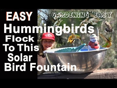 CHEAP-How To Make A $1 EASY SIMPLE Hummingbird Bird Bath Solar Water DIY Fountain Garden For Nature