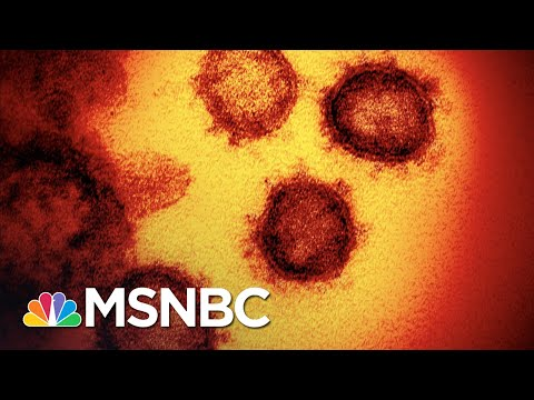 Study Finds No Benefit To Trump-Touted Drug For COVID-19 Patients | The 11th Hour | MSNBC