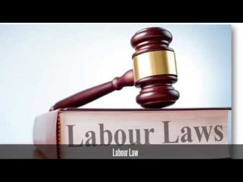 Expert Legal Services Law Firms in Dubai