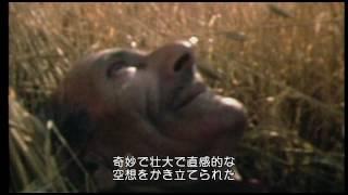 トルナトーレ 我が映画人生