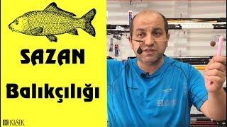 Sazan Balıkçılığı Nasıl Yapılır? Sazan Avında Hangi Ekipmanlar Kullanılır? Kısık Balık