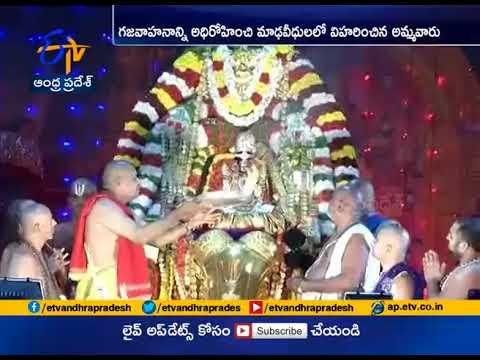 Karthika Brahmotsavam at Tiruchanur | Gaja Vahana Seva Performed for Deity Padmavati