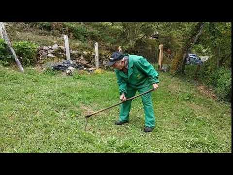 Segando a guadaña con 97 años en Piloña