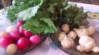 Очень вкусный,  очень полезный и лечебный салат из топинамбура (земляной груши).