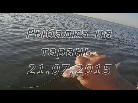 Рыбалка на тарань в Таганрогском заливе, Азовское море 21.07.15 ...