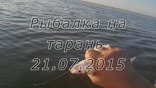 Рыбалка на тарань в Таганрогском заливе, Азовское море 21.07.15(Выехали с собакиным на рыбалку, на пару часов, перед работой., 2015-07-31T13:18:45.000Z)