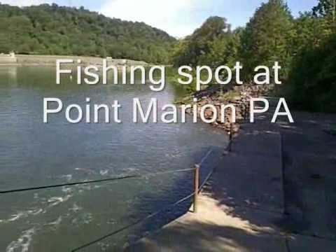 Fishing spot at point marion pennsylvania youtube for Pa out of state fishing license