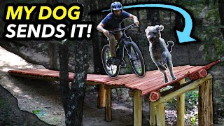 Building an INSANE Banked Drop and Riding it with MY DOG!! // Choose Your Own Trail Pt. 4