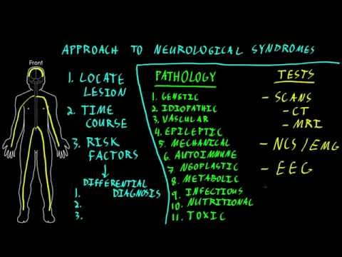 Approach to neurological syndromes