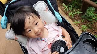 아기랑 인천 나비공원 유모차 산책