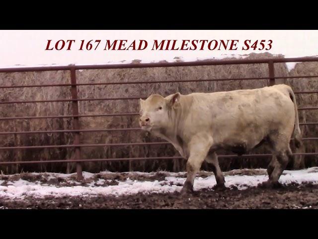 Mead Farms Lot 167