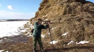 Střelba z CZ550 LUX .308 winchester