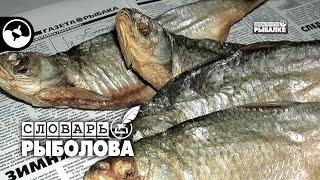 Рыболовные термины. Чердак - Чона | Словарь рыболова