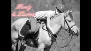 Vidéo 1000 Fans : Nos Citations Equestres !