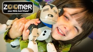 Zoomer Interactive Puppy Shadow Robot Toy Dog Toys