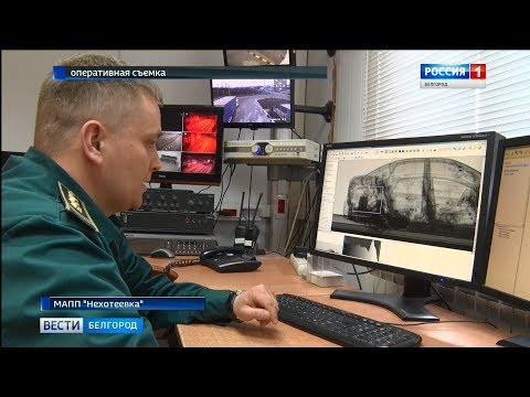 Гражданин Украины пытался вывезти из России 200 тысяч долларов
