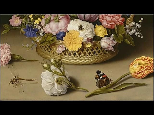 ДЕТАЛИ с Игорем Мартыновым. Между бабочкой и улиткой. Символика тихого жанра