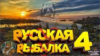 Стрим Турнир Лестница Блиц Розыгрыши Премов Водки Носорога Русская Рыбалка 4 Русский Медведь