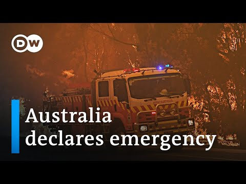 Fires and a record-breaking heatwave in Australia | DW News