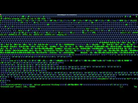 Basic Hex Editing Windows
