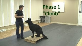 "How To Train A Dog To ""climb"" (k9-1.com)"