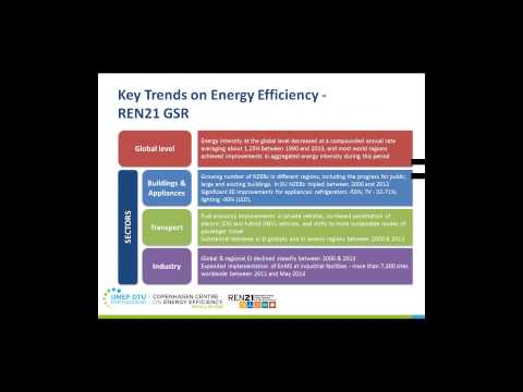 REN21 Renewables 2015 Global Status Report: Energy Efficiency
