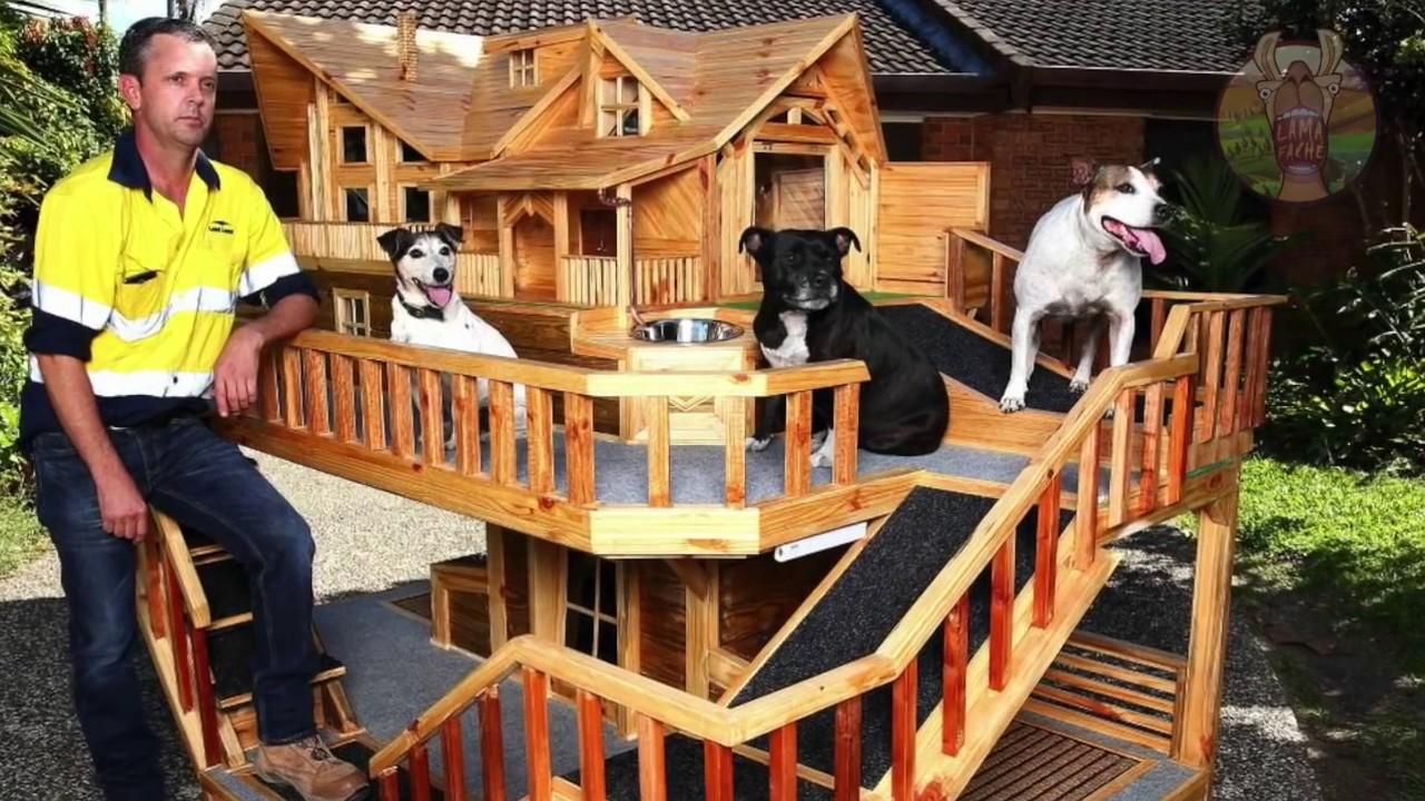 7 maisons de luxe pour chiens lama fach 720p 30fps h264 192kbit aac youtube. Black Bedroom Furniture Sets. Home Design Ideas