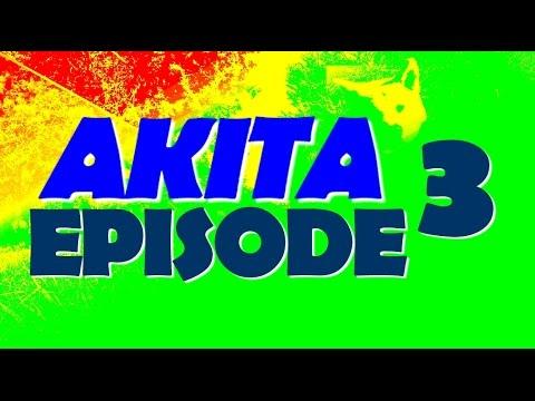 AKITA I WOK AGRESSIF Episode 3 - YouTube