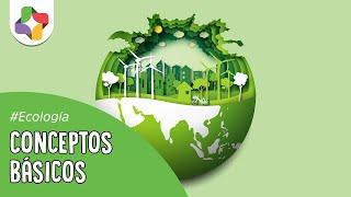 Conceptos básicos de Ecología - Ecología - Educatina