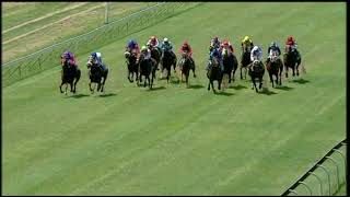 Vidéo de la course PMU PRIX CALL TELEBET TRACK & BALL FIXED ODDS ON