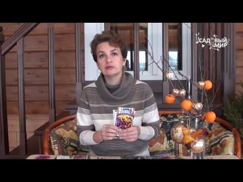 видео: Что посеять в январе. Видео