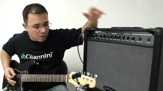 Amplificador Giannini G65