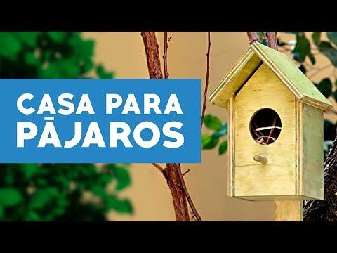 C mo hacer una casa para p jaros youtube - Casas para construir ...