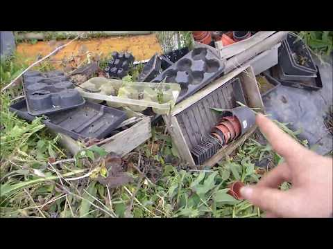 23rd June part 2 - Clearing the new plot and planting leeks