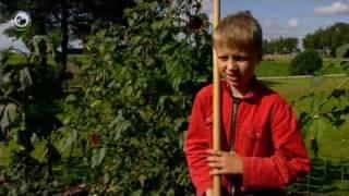 Hea!: In jonge bouboer yn Brantgum
