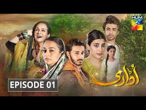 Udaari Episode 1 HUM TV Drama