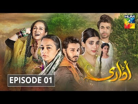 udaari-episode-1-hum-tv-drama