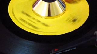 Stevie Wonder - Blowing In The Wind - Tamla: 54136